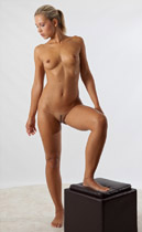 Jenni026 figure drawing art model. Find it in your pose Library when you create a new login.